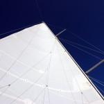 Woodwind 07-03-09 (7)