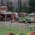 Rocking Horse Ranch Nov 2009 (122)EDIT