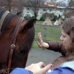 Rocking Horse Ranch Nov 2009 (160)EDIT